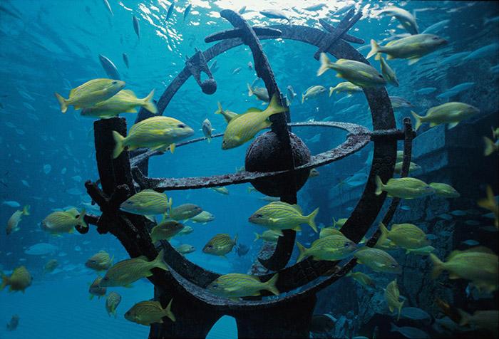 Атлантис дубай аквапарк цены михалков недвижимость за рубежом никита