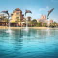 Дельфинарий Dolphin Bay Atlantis The Pam